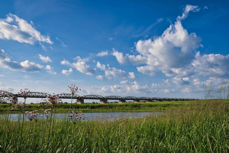 Dömitzer alte Eisenbahnbrücke